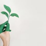 green, eco-friendly